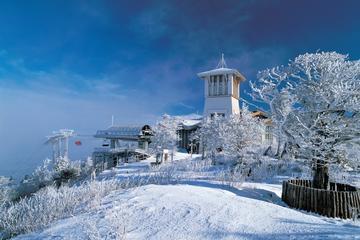 Excursión de 2 días a la estación de esquí de Yongpyong desde Seúl