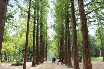Full-Day Nami Island and Chuncheon...