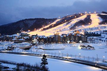 Shuttle Bus from Seoul to Yongpyong or Alpensia Resort in Pyeongchang