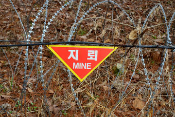 Tour dell'Area di sicurezza congiunta (JSA): avvicinati al confine