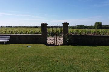 Medoc Afternoon TOUR IN SPANISH
