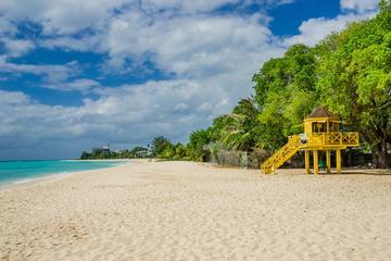 Excursion à la grotte Harrison et à Bathsheba sur l'île de la Barbade
