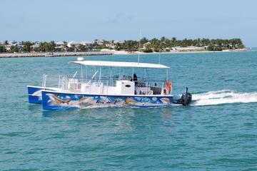 Excursão de catamarã para ver tubarões e a vida selvagem do Key West
