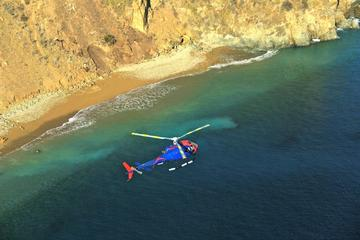 Book Coastal Sights Helicopter Tour from Long Beach on Viator
