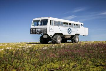 Day Trip Tundra Buggy Summer Day Tours near Winnipeg, Canada