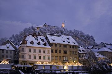 Ljubljana Lights and Delights Winter Christmas Market Tour with...