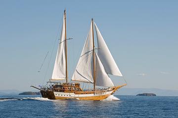 All Day Cruise Luxury Sailing Experience  to Aegina-Agistri-Moni
