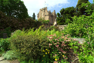Crathes Castle, Garden, and Estate