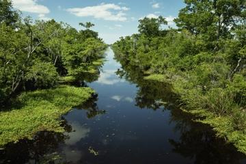 Nouvelle-Orléans en hydroglisseur