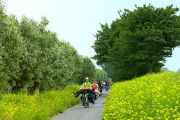 Tour in bicicletta nella campagna di Amsterdam con degustazione