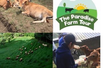 The Paradise Farm Tour & Organic Dinner