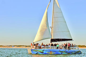 Book Daytime Dolphin Watching Sailing Cruise on Viator