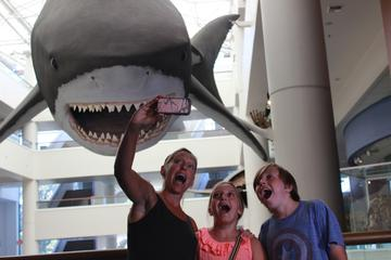 San Diego Natural History Museum...