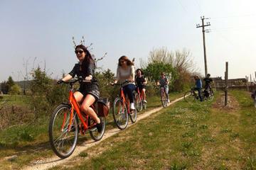 Bike Tour in Valpolicella Wine...
