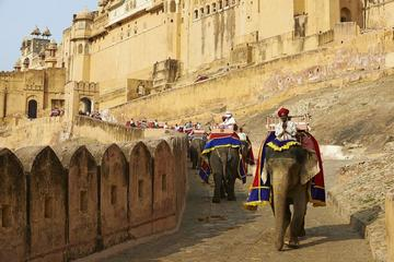 Jaipur Sightseeing with Lunch by Tuk Tuk Safari