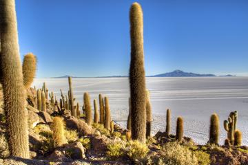 Uyuni Salt Flats Day Trip by Air from La Paz
