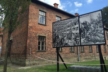Auschwitz Birkenau & Salt Mine One Day tour with lunch