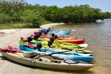Day Trip 3 Hour Kayak Rental near Naples, Florida
