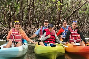 Book Mangrove Tunnel Kayak Tour on Viator