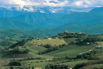 The Beauty and the Flavor of Friuli Venezia Giulia Collio Wine Tour