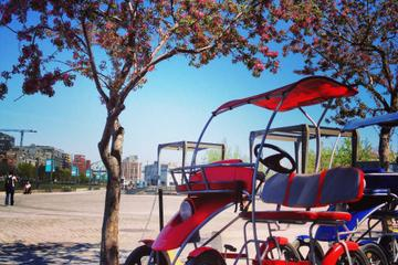 Montreal Quadricycle Rental