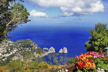 Excursão diurna em Capri e Anacapri...