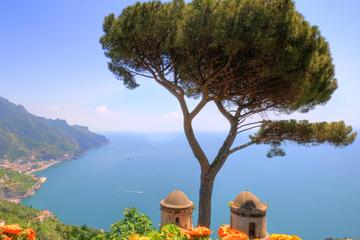 Excursão para grupos pequenos pela Costa Amalfitana saindo de...