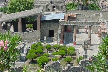Herculaneum and Mt Vesuvius Excursion from Sorrento