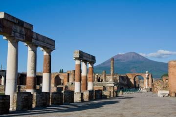 Private Full-Day Tour to Pompeii and Mt Vesuvius from Sorrento