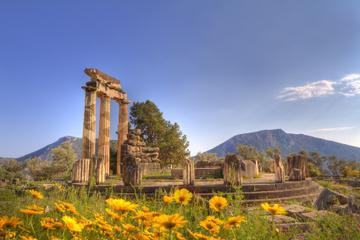 Tour privato: gita giornaliera a Delfi da Atene con pranzo incluso