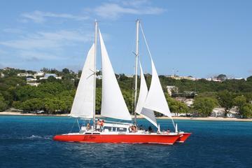 Crucero de buceo de superficie en catamarán por Barbados