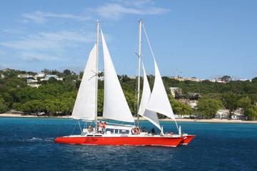 Cruzeiro em Catamarã com Mergulho de Snorkel em Barbados
