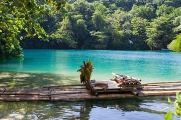 Excursión de un día a Bikini Beach, Blue Lagoon y Río Grande desde...