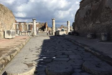 Day Tour of Pompeii Herculaneum and wine tasting
