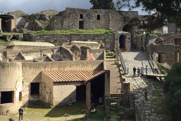 Transfer From Naples To Sorrento or Amalfi Coast with stop in Pompeii