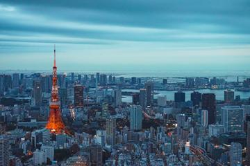 1 Day Tokyo Private Sightseeing Tour...