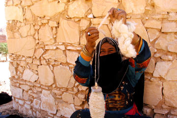 Egyptian Desert Experience: St Catherine's Monastery, Bedouin Lunch...