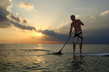 Day Trip 2 Hour Sunset Paddle Board Rental near Naples, Florida
