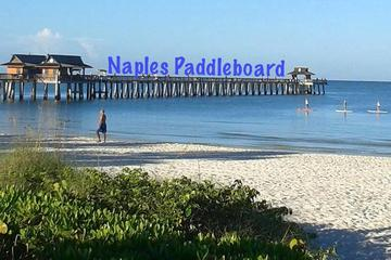 Day Trip All day Paddle Board rental in Naples Florida near Naples, Florida
