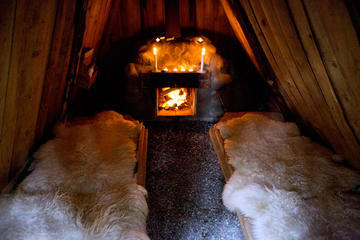 3-Night Kolarbyn Ecolodge Wildlife Adventure with Guided Moose and...