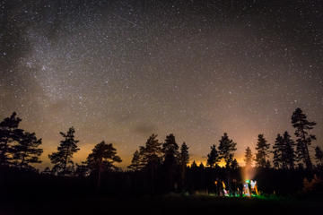 4Nächte Tierwelt in Bergslagen ab Stockholm: Camping, Wölfe, Safaris