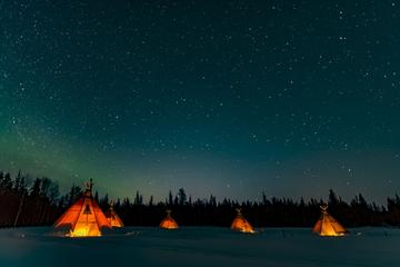 Northern Lights and wildlife in ...