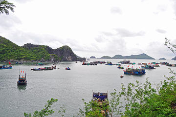 3-Day Halong Bay and Cat Ba Island Tour from Hanoi