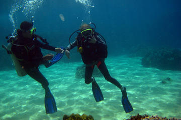 Full-day Scuba Diving at Cham Island...