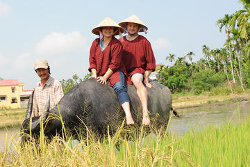 Half-Day Rice Paddy Experience from...