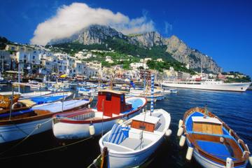 Croisière en petit groupe d'une journée vers Capri au départ de...