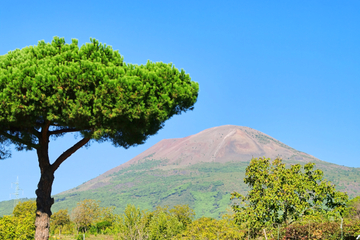 Excursion au Mont Vésuve au départ de Sorrente