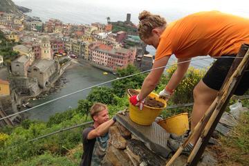 Voluntourism in the Cinque Terre