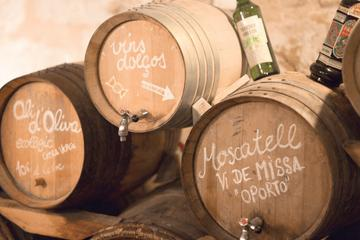 Food and Wine Tasting Experience in Mallorca