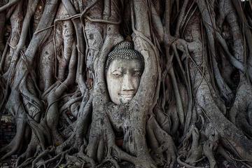 Ayutthaya Temples and Chao Phraya...
